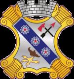 8 Infantry Regiment DUI.png