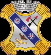 8 Infantry Regiment DUI