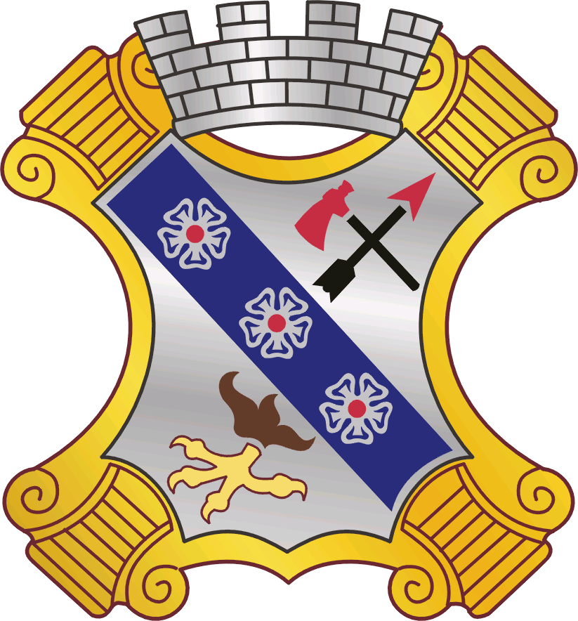 8 Infantry Regiment DUI