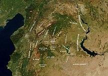 알레포 주