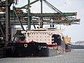 AP Jadran (ship, 2012), Golden Brilliant (ship, 2013) & Prabhu Yuvika (ship, 2004) Mississippihaven.JPG