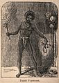 A Dayak shaman or medicine man holding a flaming torch and s Wellcome V0015963.jpg