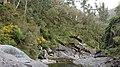 A Pobra do Caramiñal río Pedras 57.jpg