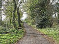 A Road To Old Hall Farm - geograph.org.uk - 284139.jpg