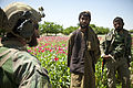 A U.S. Service member, left, with a Marine special operations team and a member of the Afghan Local Police (ALP) speak with a villager while providing security as Afghan National Army special forces help the ALP 130403-M-BO337-179.jpg