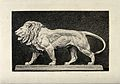 A bronze statue of a lion. Etching by A Lurat after A-L Bary Wellcome V0021508.jpg