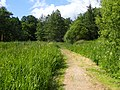 Aarslev Møllepark 01.jpg
