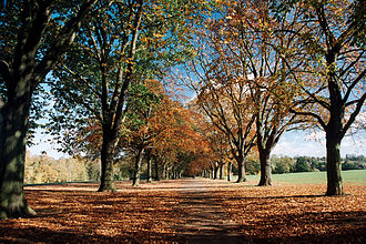 Abington Park - Abington Park