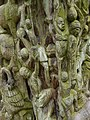 Aburi garden 14.jpg