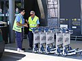 Aeroporto di Firenze - Baggage carts and collectors.jpg