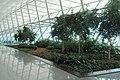 Aeropuerto Internacional de Carrasco - panoramio (19).jpg