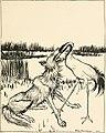 Aesop's fables (1912) (14782862775).jpg