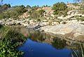 Aigua al riu Gorgos, terme de Dénia.JPG