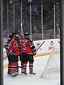 Albany Devils vs. Portland Pirates - December 28, 2013 (11622065025).jpg