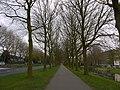 Alphen a-d Rijn - panoramio (40).jpg
