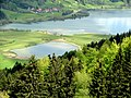 Alpsee - panoramio (9).jpg