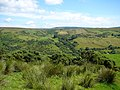 Altiffirnan Glen from Drumavoley Road - geograph.org.uk - 642799.jpg