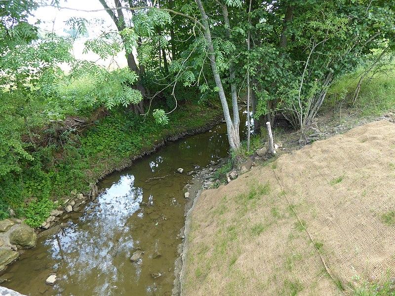 L'Amezule à Agincourt en Meurthe-et-Moselle (fr:France|France]]), vers l'amont.