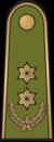 Antpetis sausumos 14 pulkininkas leitenantas.png
