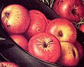 Apple detail, from- Still Life of Apples in a Hat, by Levi Wells Prentice (cropped).jpg