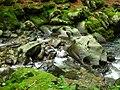 Apriltzi, Bulgaria - panoramio (55).jpg