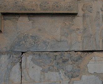 Achaemenid Arabia - Relief of the Arabian delegation bearing a dromedary, Apadana stairs of Persepolis
