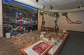 Archaeology exhibit.jpg