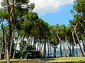 Arezzo, Parc Prato.JPG