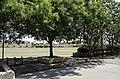 Arizona State University Campus, Tempe, Arizona - panoramio (151).jpg