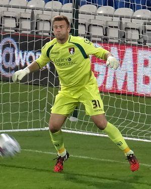 Artur Boruc - Boruc playing for Bournemouth in 2014