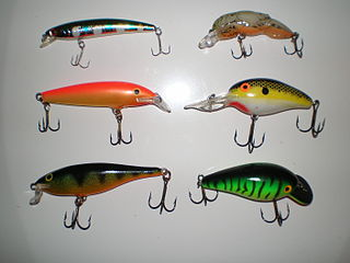 Plug (fishing) fishing lure