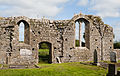Athassel Priory St. Edmund Nave North Wall and Doorway 2012 09 05.jpg
