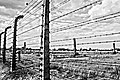 Auschwitz concentration camp4.jpg