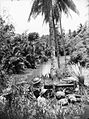 Australian 2-2nd MG Battalion troops at Scarlet Beach October 1943 (AWM photo 059578).jpg