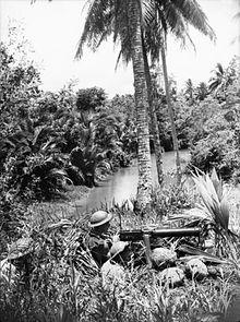 Truppen bemannen ein Vickers-Maschinengewehr auf einem Bergrucken mit Blick auf einen Bach inmitten eines Dschungels