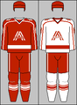 Austria national ice hockey team jerseys 1994 (WOG).png