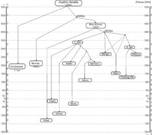 Tree model - Austro-Asiatic language tree