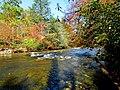 Autumn South Toe River Celo Camp NC 4279 (24096486648).jpg