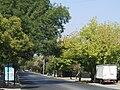 Avenida Tobalaba.JPG