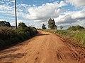 Avenida Vista Alegre - Palma - Santa Maria, foto 26 (sentido N-S).jpg - panoramio (1).jpg