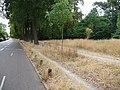Avenue de la Dame-Blanche - Fontenay-sous-Bois - 24 juillet 2015 (2).jpg
