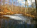 BBHT Pequot Trail Partially Frozen Pond.jpg