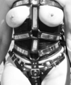 BDSM Bondage Snaps and Belts.png
