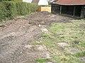 Back Garden in 2008 - panoramio.jpg