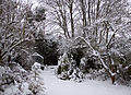 Back garden in the snow (5270950021).jpg