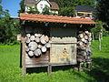 Bad Schwartau, Naturerlebnisraum Schwartautal, am Kurpark IMG 9961.JPG