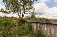 Balloërveld, natuurgebied in Drenthe 007.jpg