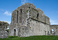 Ballybeg Priory St. Thomas Cloister North Wall 2012 09 08.jpg
