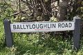 Ballyloughlin Road, County Down, May 2011 (05).JPG