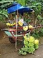 Banana Vending Cart - Near Viñales - Cuba (5289830090).jpg